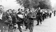 British_paratroops_being_marched_away_by_their_German_captors.jpg