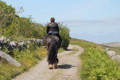 Time Travel, Us Travel, Wild Atlantic Way, Show Jumping, Cob, Horse Riding, Trekking, Vacations, Irish