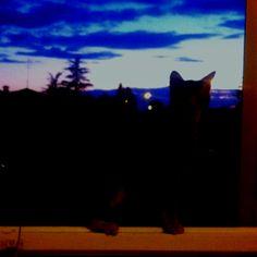Barbara al tramonto