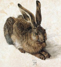 "16. ""Young Hare"" by Albrecht Durer - The 25 Most Iconic Artworks of Animals 