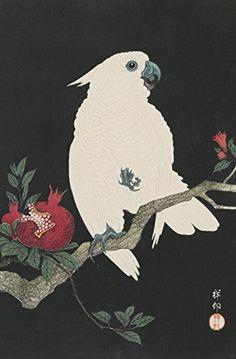 "Japanese Art Print ""Pomegranate and Parrot (Zakuro ni Omu)"" by Ohara Koson. Shin Hanga and Art Reproductions http://www.amazon.com/dp/B016W1N0G6/ref=cm_sw_r_pi_dp_Tuctwb18ZEH26"