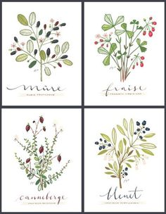 Lovely modern  botanical prints. 4 PETITS FRUITS  FRENCH Culinary Art Collection by evajuliet, $75.00