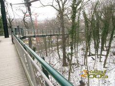 Картинки по запросу schonbrunn zoo top
