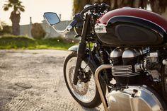 Jason Paul Michaels Triumph Thruxton 900 CR