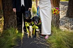 Kim Blau Photography is located in Vancouver, Washington and specializes in on-location portraiture. Wedding Dogs, Sisters Oregon, Vancouver Washington, Newborns, Beautiful World, Family Photography, Editorial, Photographs, Engagement