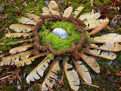 Natural mandala with leaves, a stone and grass. Natural, creative and beautiful land art. Flower Mandala, Mandala Art, Land Art, Dragon Fight, Sacred Geometry, Geometry Art, Outdoor Art, Environmental Art, Nature Crafts