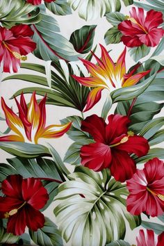 Fabric, Red Hibiscus Floral on Cream, Tropical Hawaii, Bird of Paradise Flower, By The Yard - wallpaper - Motif Tropical, Tropical Pattern, Tropical Flowers, Red Flowers, Tropical Leaves, Hibiscus Flowers, Hawaii Pattern, Hawaii Flowers, Lilies Flowers