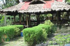 """Exploring Negros Occidental: the """"Organic Capital"""" of the Philippines Bacolod City, The Province, Natural Wonders, Agriculture, Philippines, Exploring, Gazebo, To Go, Outdoor Structures"""