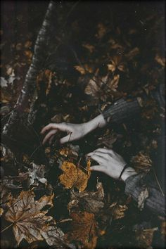 Gardening Autumn - - With the arrival of rains and falling temperatures autumn is a perfect opportunity to make new plantations Story Inspiration, Writing Inspiration, Character Inspiration, Autumn Aesthetic, Witch Aesthetic, Druid D&d, Arte Obscura, Over The Garden Wall, Southern Gothic