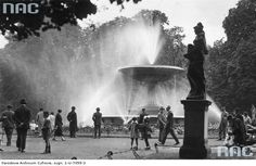 Ogród Saski Warsaw, Niagara Falls, Poland, Fountain, History, City, Nature, Travel, Lost