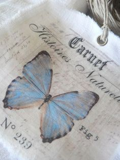 Gift Tags and Labels Light Blue Aesthetic, Blue Aesthetic Pastel, Aesthetic Colors, Aesthetic Photo, Aesthetic Pictures, Alice Blue, Photocollage, Blue Butterfly, Butterfly Kisses