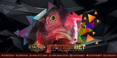 Pada artikel kali ini StationBet.Biz selaku Agen s128 Resmi akan membahas mengenai Bentuk Ciri Kaki Sabung Ayam Berbahaya. Parrot, Bird, Animals, Parrot Bird, Animales, Animaux, Birds, Animal, Animais