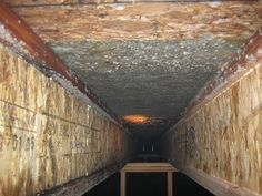 Have you checked your crawlspace for mold? Prevent mold from growing in your crawlspace.   http://www.alliance-enviro.com/prevent-mold-growing-crawlspaces/