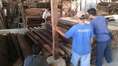 Proses pembelian kayu