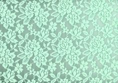 Fashion Fabric Mint Stretch Lace