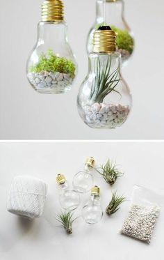 diy projekte alte glühbirnen bastelideen terrarium selber machen