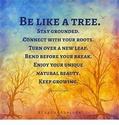 be like a tree stay grounded - Yahoo Image Search Results