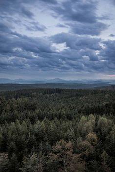 Hier kann man den Blick über den Kobernaußerwald schweifen lassen. #urlaubambauernhof #oberösterreich #innviertel #hausruckwald #kobernausserwald Mit Unterstützung von Bund, Ländern und Europäischer Union (LE 14-20) © Robert Maybach
