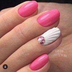 Gorgeous Seashell