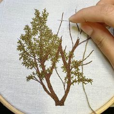 Contemporary Embroidery, Modern Embroidery, Embroidery Art, Embroidery Patterns, Stitch Patterns, Hand Embroidery Stitches, Silk Ribbon Embroidery, Embroidery Techniques, Cross Stitch Embroidery