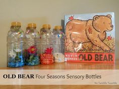 Four seasons sensory bottles to go with the book Old Bear.  Looks like a fun activity to with the Grand-Girls!