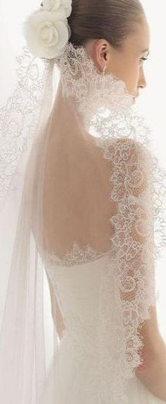 Oh my goodness! Gorgeous! Gorgeous! Everything about it is GORGEOUS!! Dream veil and dress RIGHT HERE!