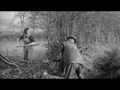 A really interesting instructional film from the on how to make a living livestock hedge using free local resources Land Girls, Farm Fun, Garden Care, Technical Drawing, Hedges, Livestock, Horticulture, Diys, Animation