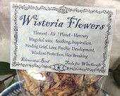 Dried Wisteria Flowers for magick , Wicca, Greenwitch, Witchcraft, Hedge Witch, for magickal intent Herbs for Magic