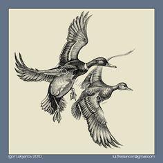 Mallards (wild ducks) illustration, drawing by Igor Lukyanov (cross-hatching) Duck Hunting Tattoos, Duck Tattoos, Duck Illustration, Illustrations, Bird Drawings, Animal Drawings, Art Canard, Duck Drawing, North American Animals
