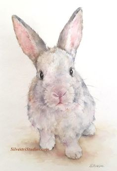 This bunny rabbit is available as the original watercolor painting, print and greeting cards. Perfect for the bunny art nursery or anyone who loves bunnies for their decor!  To view more animal artwork by Teresa Silvestri, visit www.SilvestriStudios.com . (Photo reference thanks to East Bay Rabbit Rescue)
