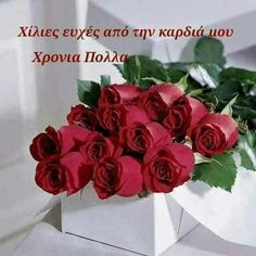 Bouquet of beautiful roses Flower Symbol, Beautiful Rose Flowers, Hanging Flowers, Rose Wallpaper, Rose Bouquet, Trees To Plant, Happy Valentines Day, Red Roses, Bouquets