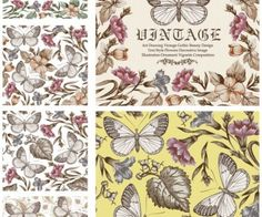 Vintage butterflies patterns vector Aged vintage colouring