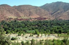 A day tour to Setti Fatma. http://www.igomorocco.com/Morocco-Excursions/day-tour-to-ourika-valley-setti-fatma-cascades-from-marrakech.html