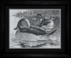 Terry Redlin Bufflehead Duck Pencil Sketch
