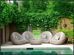 Tropical Small Garden Design Inspiration 7   The Best Garden Design ...836 x 627   112KB   bestgardendesign.net