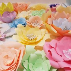 Paper Flower Wall, Paper Flower Backdrop, Paper Flowers, Colored Paper, Origami Paper, Paper Decorations, Special Occasion, Backdrops, Rose
