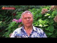 Gunther Schmidt - Milton Erickson Institute - METAFORUM international Interview
