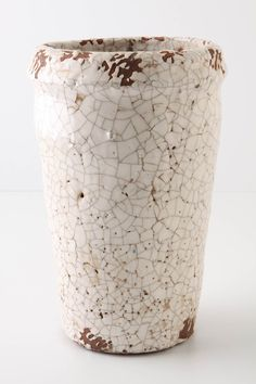 I want all the variations they have on this pot so I can fill them with little ferns and put them in my kitchen!