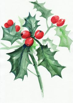 Green holly branch with berries. Holly branch watercolor painting on white. Symbol of Christmas and new year vector illustration Watercolor Christmas Cards, Christmas Card Crafts, Christmas Drawing, Watercolor Cards, Christmas Art, Watercolor Illustration, Watercolor Flowers, Xmas Cards, Watercolour Painting