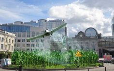 Monsanto and Dupont/Pioneer Continue Pulling GM Crops from EU
