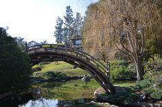 Botanical Garden, Huntington Library