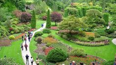 images-Butchart-Gardens-is-a-garden-flower-tourism,-colombia