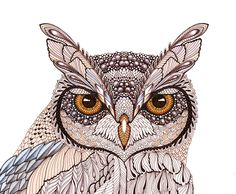 OWL. Design for www.atriumnyc.com by Ola Liola, via Behance