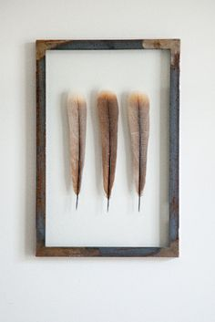 Naturel Beige Turkey Feathers  30 x 45 cm. could DIY this as a simple decor piece