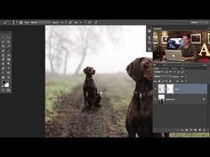 How to Duplicate Anything in Perspective using Photoshop - YouTube