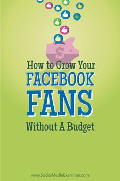 How to Grow Your Facebook Fans Without a Budget: Curate; Promo swaps; Q&A; Details.