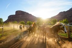 Sorrel River Ranch Hotel & Spa Resort- A Luxury Moab Lodging Experience - http://www.interiordesign2014.com/home-design-ideas/sorrel-river-ranch-hotel-spa-resort-a-luxury-moab-lodging-experience/