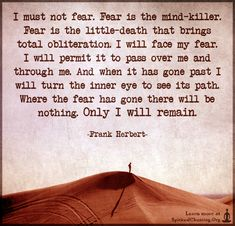 I must not fear. Fear is the mind-killer. Fear is the little-death that brings total obliteration