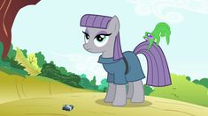 Maud Pie (character)/Gallery - My Little Pony Friendship is Magic Wiki