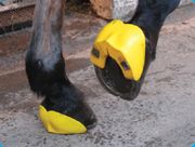 The ShoeSecure® horseshoe shield is a device precision crafted in durable rubber to further secure the horse's shoe and protect the horse's heel from being clipped by its rear hooves. The back quarter of the horse's hoof, hoof wall and part of the frog are protected from the typical causes of shoe loss.